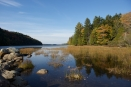 ©TracyLandry.EchoLake.Maine_DSC4132 copy